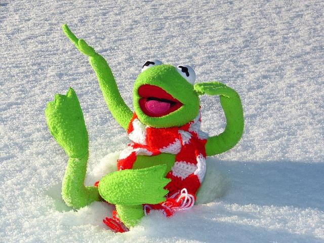 žabák na sněhu