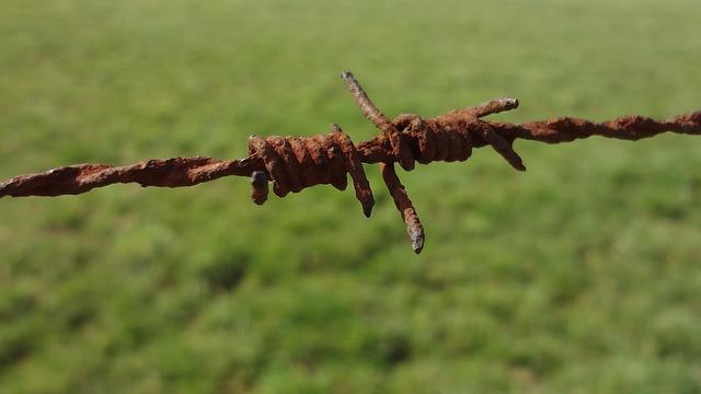 ostnatý drát