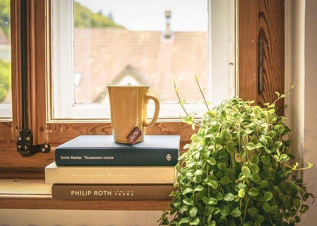 knihy a kvet pri okne.jpg